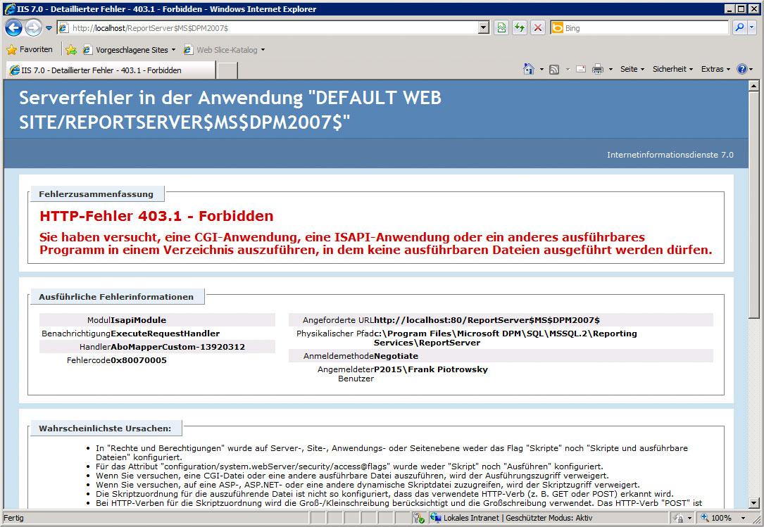 Fehler auf der ReportServer-Website